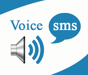 Bulk Voice Call SMS Service